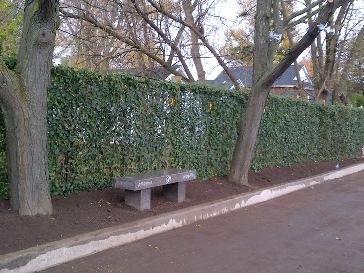 Gallery | Mori Green Living Fences Great Product For Adding Instant Privacy,  Value And Beauty