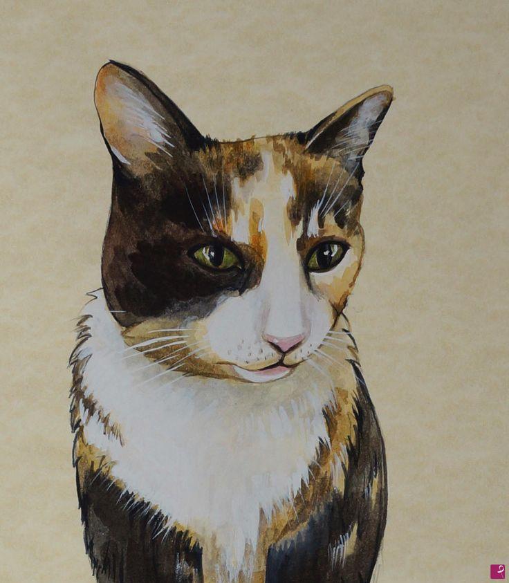 gatto di Natalia Khromykh