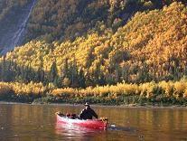 Détour nature. canot sur la rivière Mistassibi. Faune très présente: ours, orignal. Chalet confortable