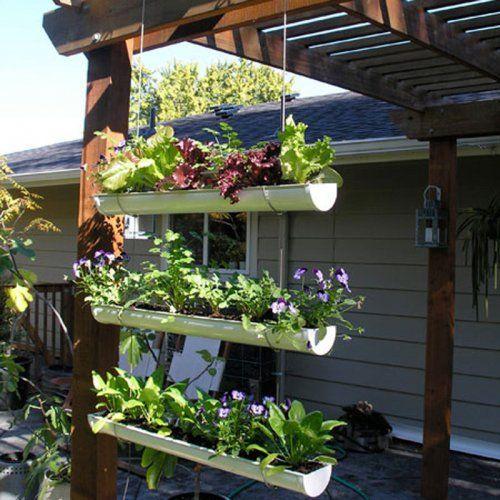 Un jardin suspendu dans des gouttières
