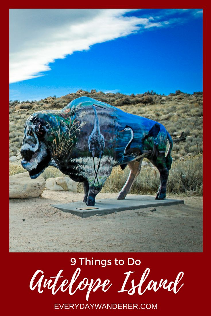 Antelope Island is the largest of ten islands in the Great Salt Lake near Salt Lake City, Utah. Here are nine things you can do when you visit Antelope Island State Park. #visitslc #visitsaltlake #visitutah #utah #saltlakecity #slc #bison #antelope #antelopeisland #hikeutah