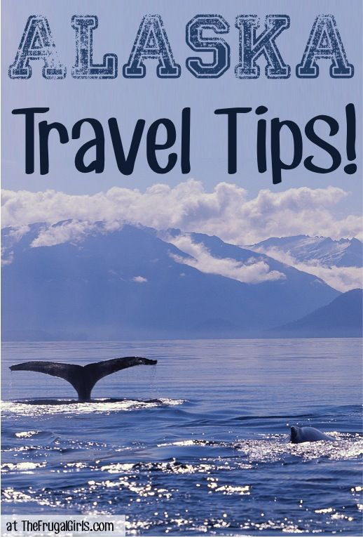 12 Fun Things to See and Do in Alaska! ~ from TheFrugalGirls.com #Sweepstakes for your chance to #win one of five 500.00 American Express gift cards. Enter now: https://www.facebook.com/HALCruises/app_363845683737502 #Alaska