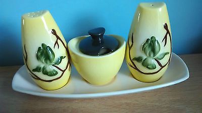 Attractive Vintage Carlton Ware Hand Painted Cruet Set.Australian Design.