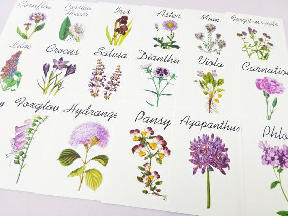 Purple Flower Table Cards Another Option Use Names Instead Of Numbers For Tables Wedding Plans Pinterest And