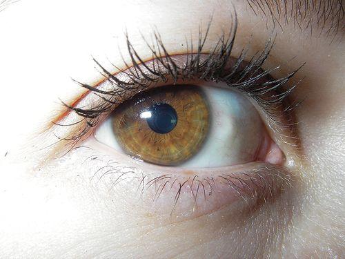 ojos marrones claros - Buscar con Google