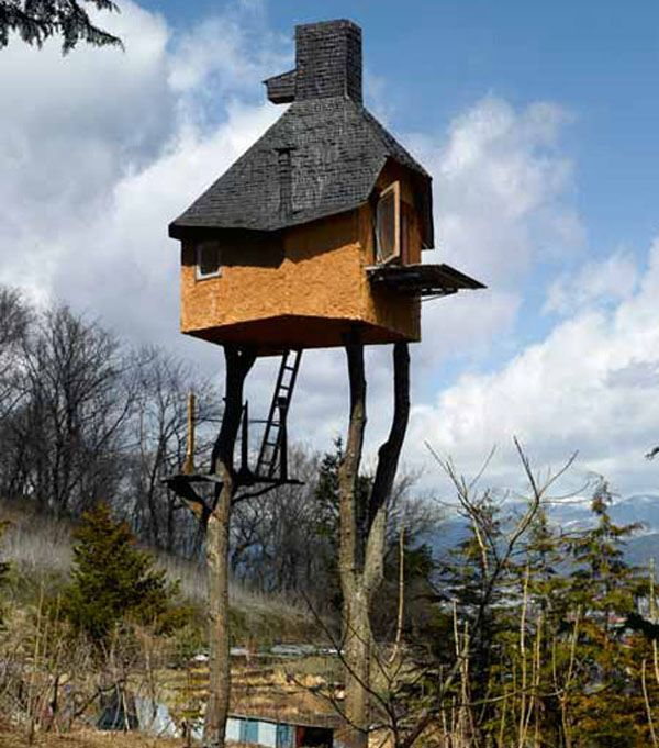 Google Image Result for http://www.choices.co.uk/blog/wp-content/uploads/2012/02/Teahouse-Tree-house.jpg