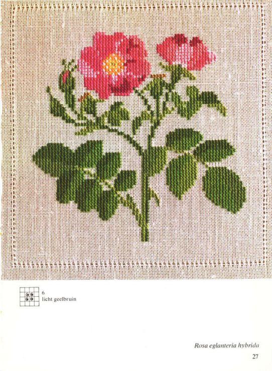 Gallery.ru / Фото #12 - Cross Stitch Pattern in Color - Mosca