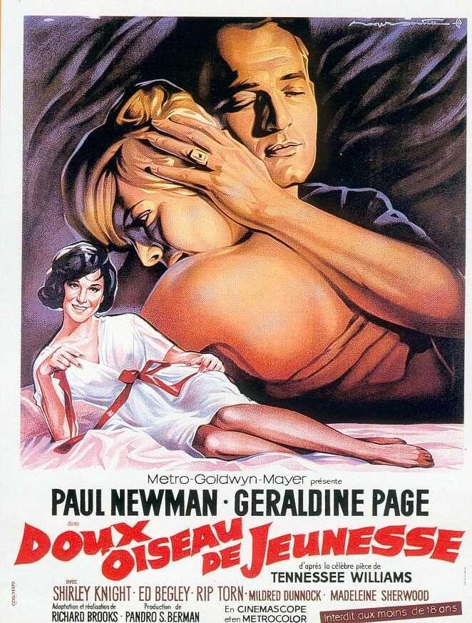 """Sweet Bird of Youth"" 1962: Anno 1962, Sweet Birds, Film Favorito, De Jeuness, Film 1960 1969, Cine Italien, Donatello Cine, Film 19601969, Who"