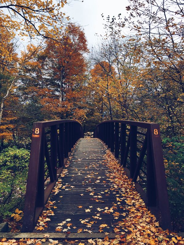 16 Reasons Fall is Freaking Fantastic