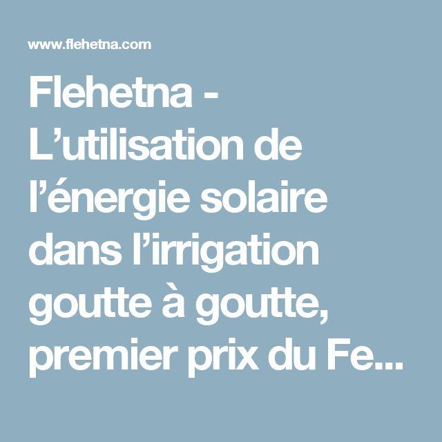 Flehetna - L'utilisation de l'énergie solaire dans l'irrigation goutte à goutte, premier prix du Festival des inventions scientifiques de Béja