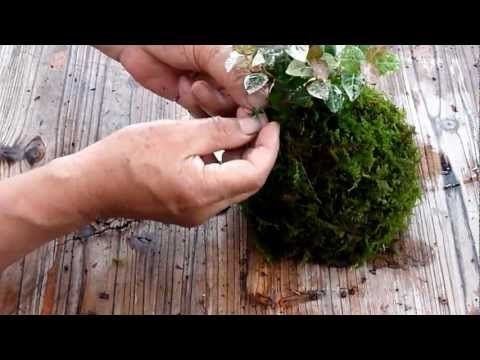 How to make kokdama // Japanese hanging Gardens