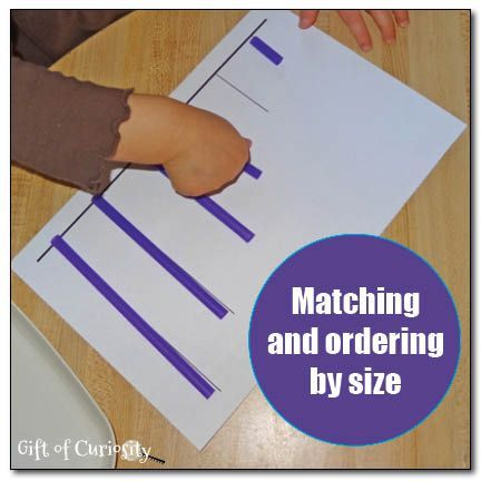 Matching and ordering by size - a free printable to support this early math skill for toddlers and preschoolers from Gift of Curiosity