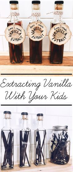 Food Science For Kids - Making Vanilla Extract. Watch vanilla darken within weeks as vanillin compounds are extracted from Madagascar Vanilla Beans.
