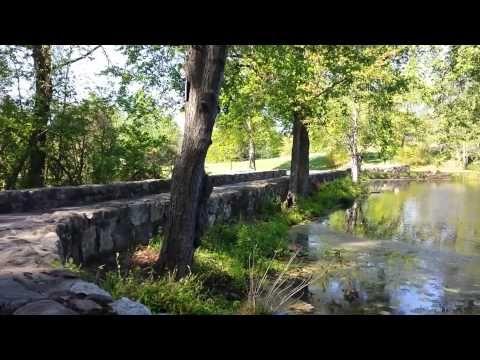 My #Jikiden #Reiki Journey Training Environment - YouTube