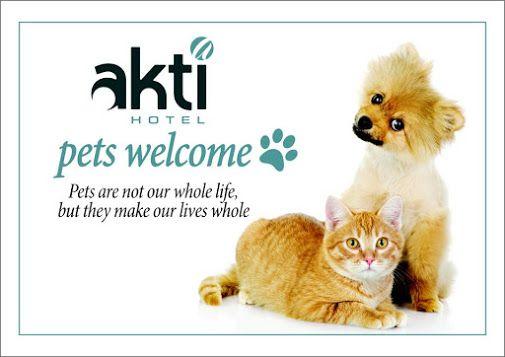 Αγαπάμε τα ζώα και το δείχνουμε έμπρακτα...  www.aktihotel.gr #Petfriendly #Aktihotel #Bedandbreakfast #Ioannina #Epirus