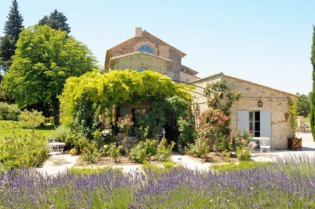 Dans le jardin d'un Mas de Provence à Carpentras,