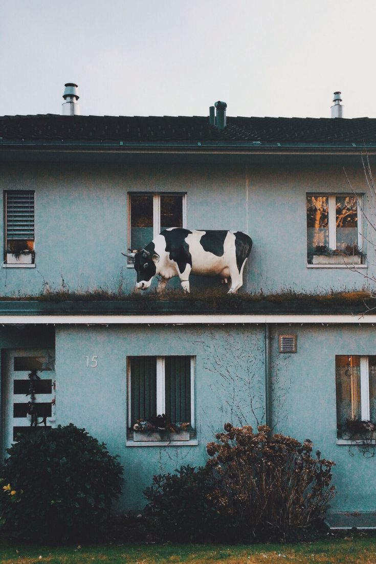 Only in Switzerland would there be a cow statue on someone's roof!