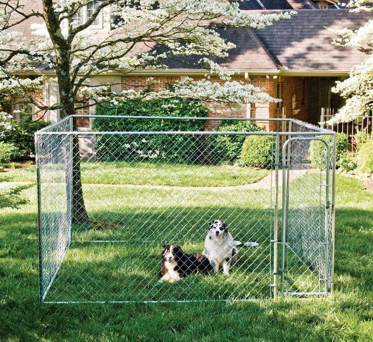 Best 25 10x10 Dog Kennel Ideas On Pinterest