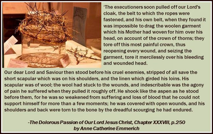 dolorous passion of our lord pdf