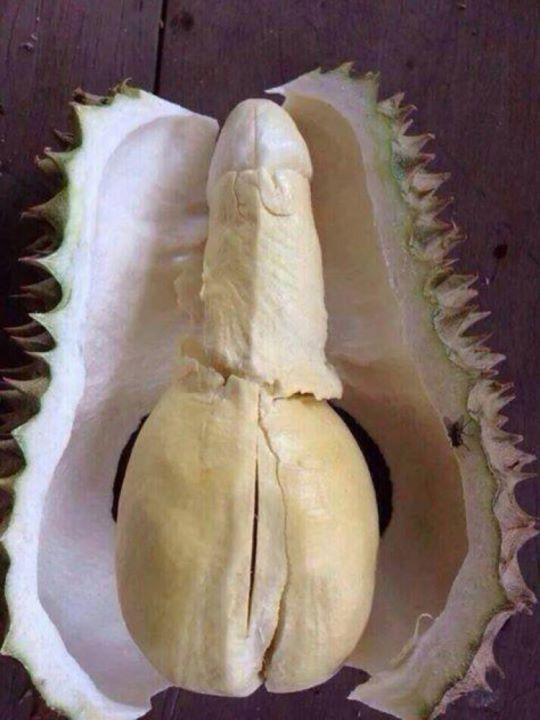 """Durian, el """"rey de las frutas"""". La pulpa de esta fruta es considerada afrodisíaca y también utilizada por la medicina china, para hacer vino (aunque su producción aún no fue aprobada), también dulces, helados, smoothies, y una gran variedad de platos asiáticos.  Visita mi página web www.acatering.com.mx #durian"""