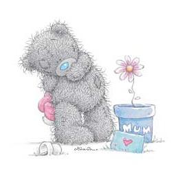 Tatty Teddy ~