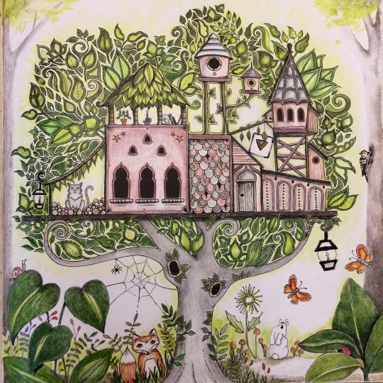 3936 Best Coloring Johanna Basford Enchanted Forest Images On
