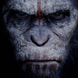 Роман Пьера Буля, в котором обезьяны превосходят людей в интеллекте, вдохновил на создание игр, комиксов, сериалов и долгоиграющей голливудской франшизы. THR встречает картину «Планета обезьян: Революция» с нескрываемым энтузиазмом — история приматов оказалась в надежных руках.
