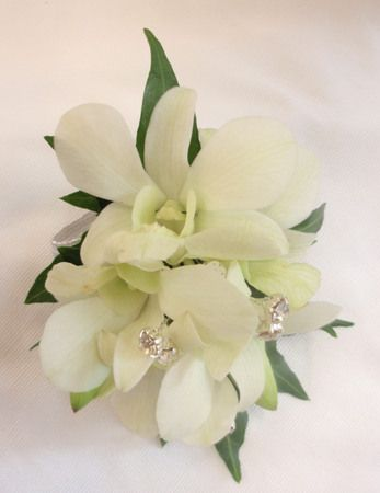 White Orchid Wrist Corsage with diamante spriggs - Occasions ...                                                                                                                                                                                 More