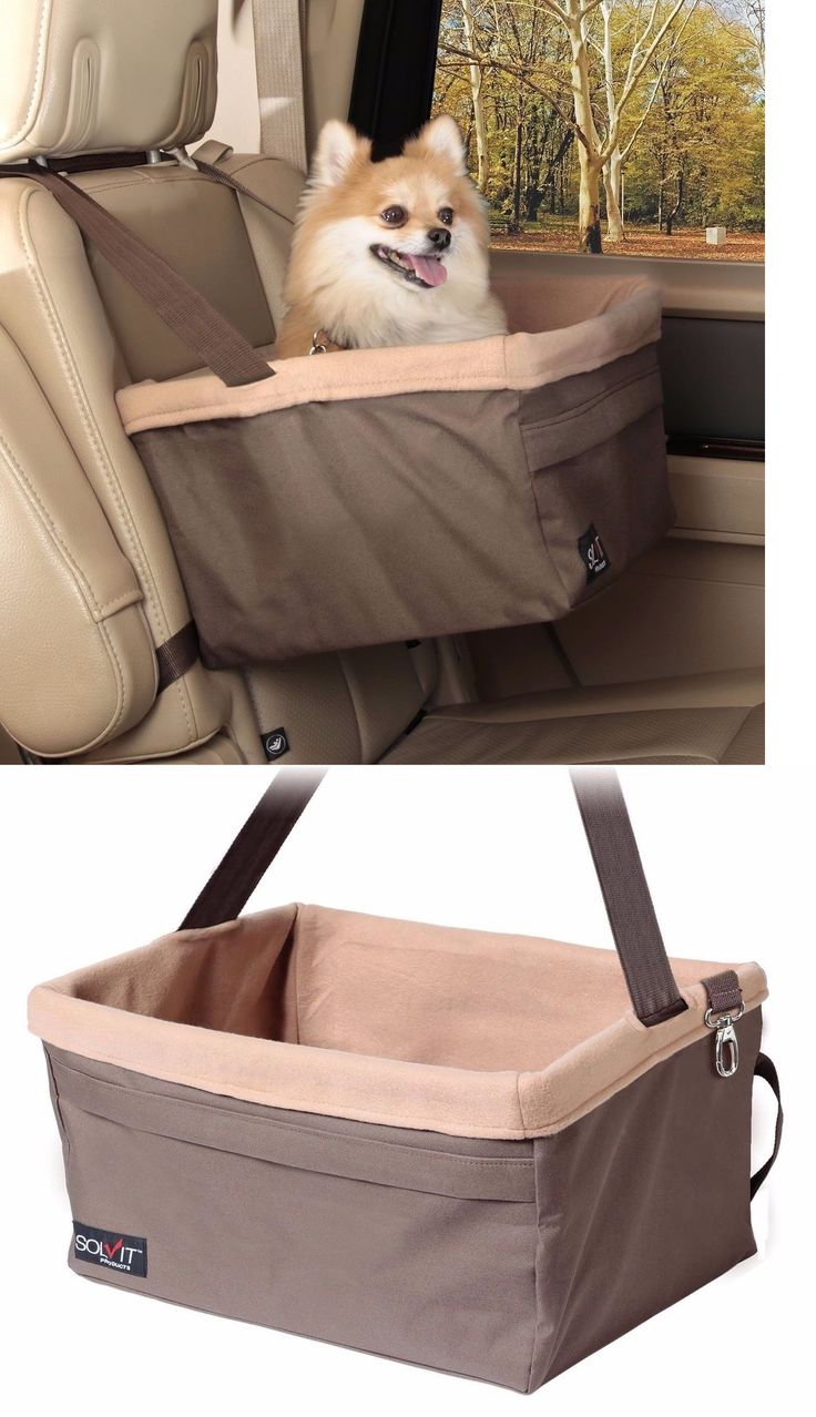 Car Seats and Barriers 46454: Sale!!! Car Seat For Dog Pet Cat Booster Travel Box Lining Chair Transport -> BUY IT NOW ONLY: $55 on eBay!