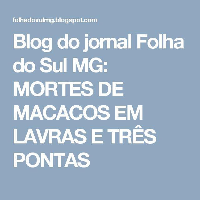 Blog do jornal Folha do Sul MG: MORTES DE MACACOS EM LAVRAS E TRÊS PONTAS