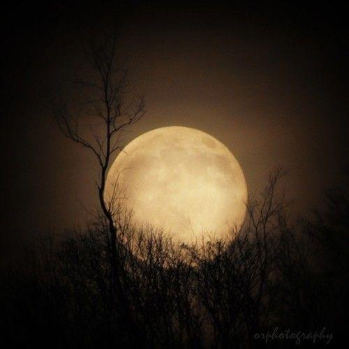 Full moon... beautiful
