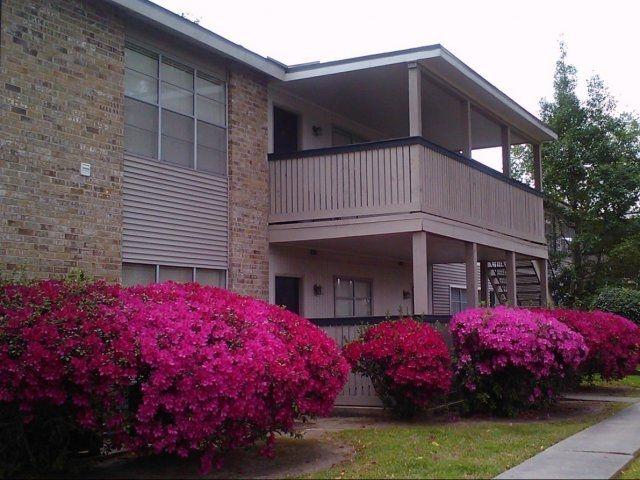 Apartments Baton Rouge LA :- #ApartmentRentalsBatonRougeLA #MaisonBocageApartments #ApartmentsBatonRougeLA #Louisiana #BatonRouge #Apartments !!! http://www.maisonbocageapt.com.
