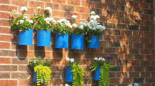 D, I think some of these attached to my porch railing.  What do you think?: Gardens Ideas, Cane Memorial, Paintings Cans, Coffee Cans, Flower Pots, Planters, Tins Cans, Diy, Wall Gardens