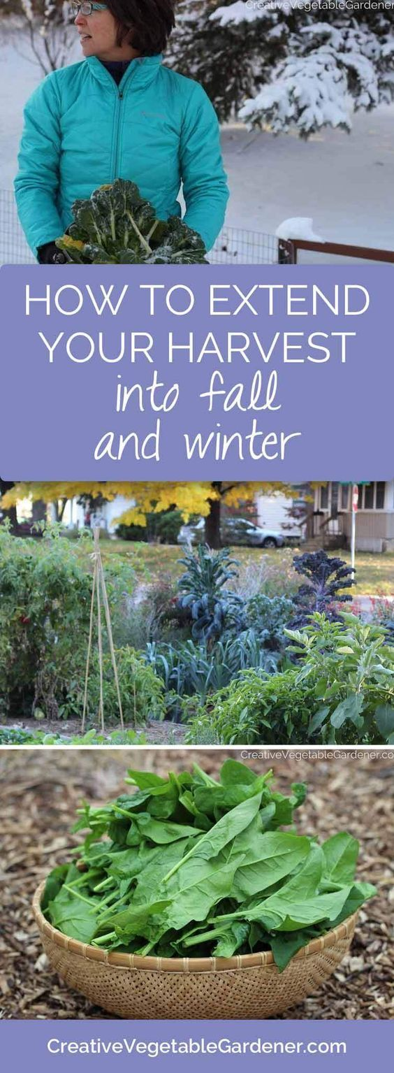 8 best garden tracking images on pinterest utah early spring