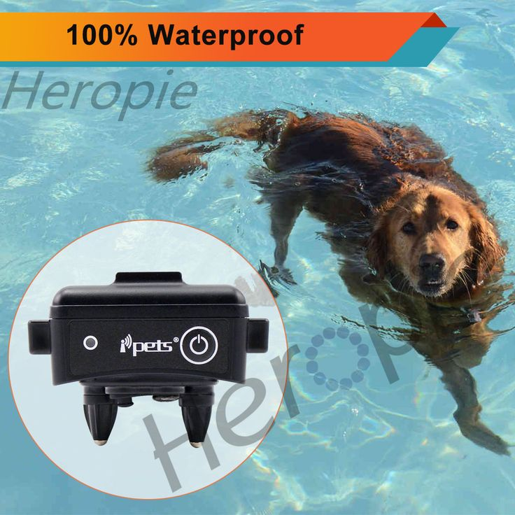 HEROPIE 300M Dog Trainer Waterproof Rechargeable Remote Pet Dog Training Collar Electric Shock Control 100LV Blacklight For Dogs