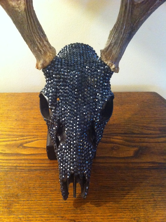 8 Point Natural Shed Deer Skull Decorated with by UniqueDesignShop, $700.00