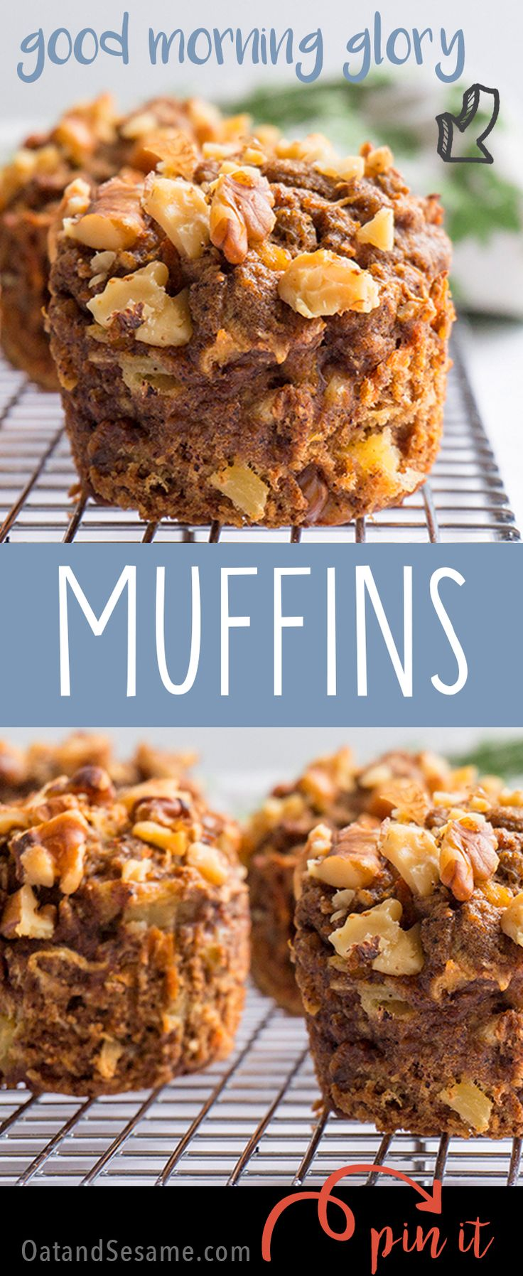 Good Morning Glory! A Glorious Healthy Muffin!   #recipe at OatandSesame.com