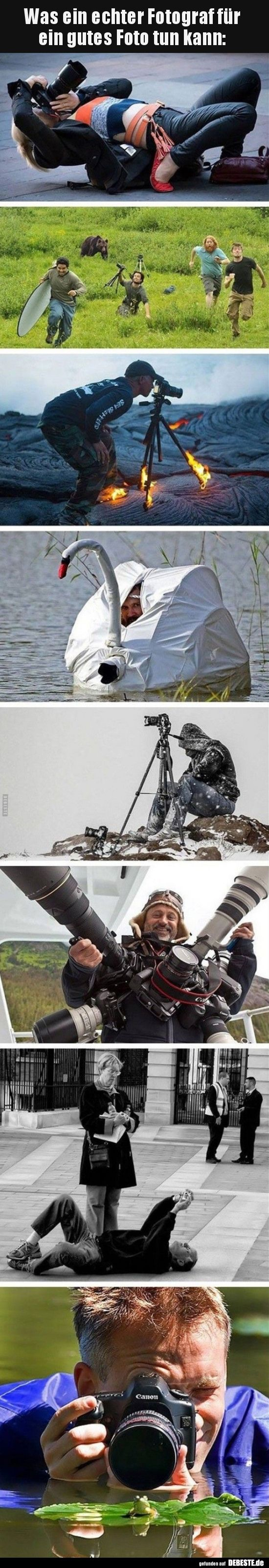 Was ein echter Fotograf für ein gutes Foto tun kann.. | Lustige Bilder, Sprüche, Witze, echt lustig
