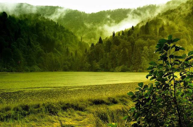 Green lands of Artvin, Turkey | Spectacular Places