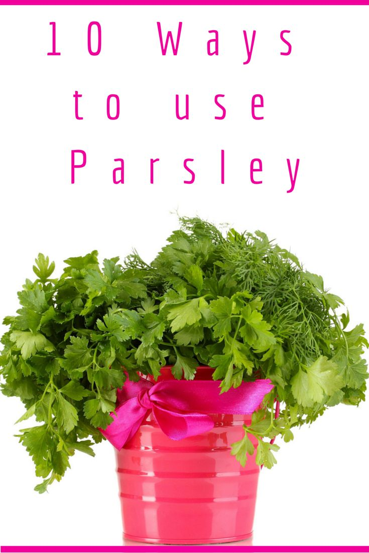 10 ways to use Parsley for yourself, in the kitchen and your pets.