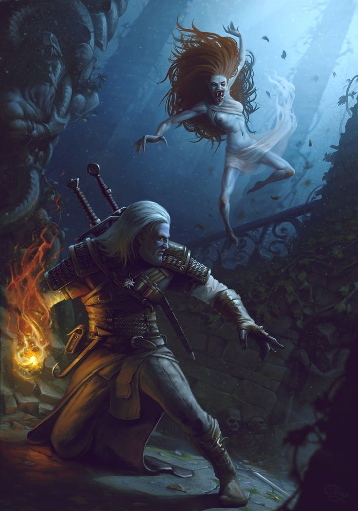The Witcher by MaxDonio.deviantart.com on @DeviantArt
