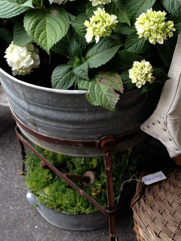 A perfect tub and stand for my hydrangeas.  Debra Hall display