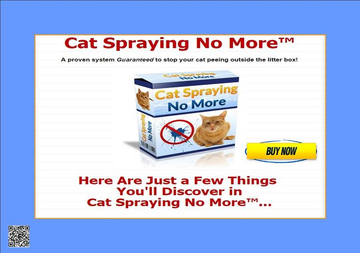 VET Reveals How to Stop Your Cat Peeing Outside the Litter Box PERMANENTLY! http://23366z5frkbr5n11hg-l1z9u9o.hop.clickbank.net/?tid=ATKNP1023