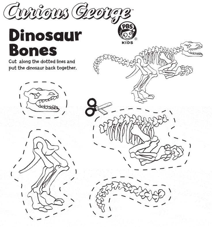 Worksheet Dinosaurs Worksheets Grade 1 Cut Paste 25 best dinosaurs images on pinterest dinosaur crafts kids put the back together simple cut and glue activity