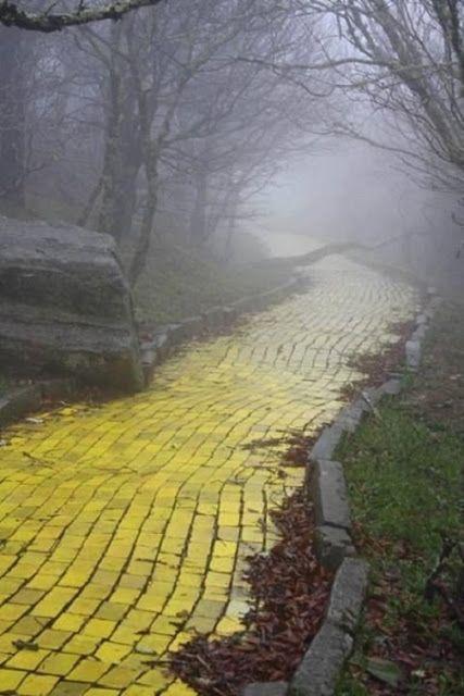 Ennyi: Ha nem tetszik az út, amelyen sétálsz, bármikor elkezdesz egy újat. - Németh György