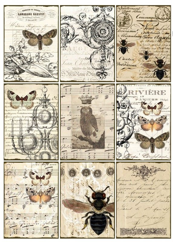 Printables--- very cool for mod podge projects! Sheet vlinders en vliegen | ~Dieren | Nostalgie Brocante