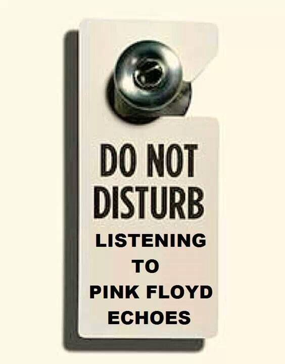 Do not disturb. Listening to Pink Floyd Echoes. RIGHT NOW. LIKE REALLY. LIKE, NO, YOU DO NOT EVEN UNDERSTAND HOW AWESOME SYD BARRETT'S GUITAR PLAYING IS. TRY TO UNDERStand the best you can. :)