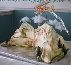 Plane Over Mountains Cake