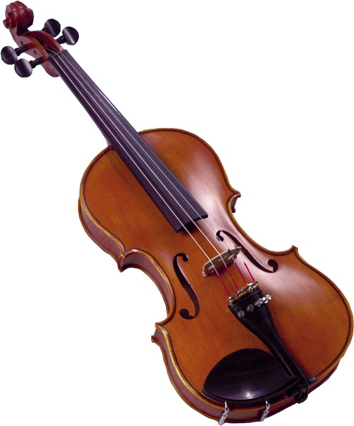 Violin rental $12/month