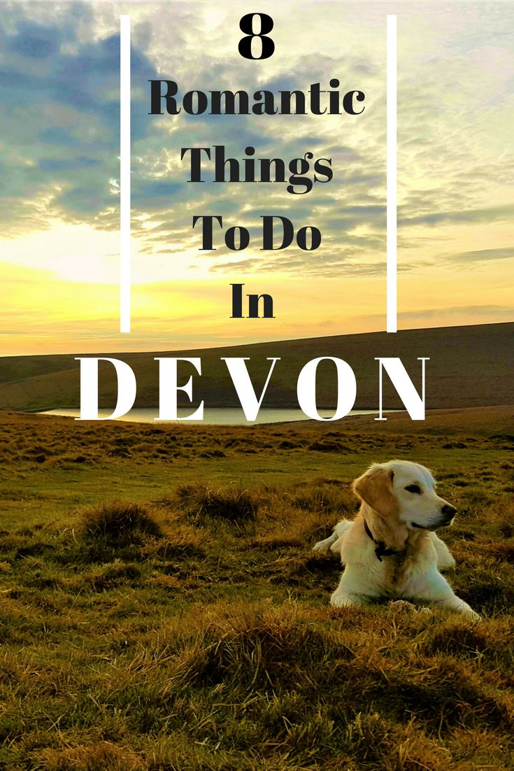 Devon is one of the most Romantic destinations in the UK also being the most popular place to tie the knot!!